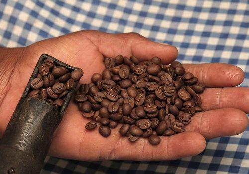 Processo de Torrefação do Café